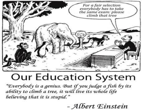 Image result for albert einstein our education system